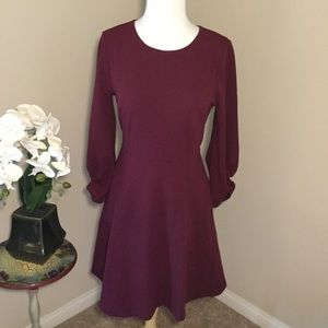 Lark & Ro Burgundy Fit & Flare Dress w/Pockets 6
